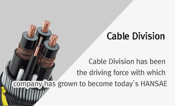 Cable Division